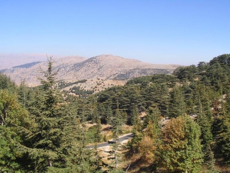 Barouk_Mountain