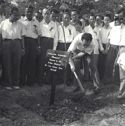 LKY-1963-Mempat